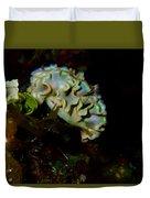 Lettuce Sea Slug Duvet Cover