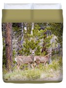 Mule Deer In The Pike National Forest Of Colorado Duvet Cover
