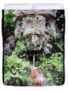 Public Fountain In Palma Majorca Spain Duvet Cover