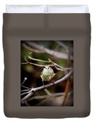 9343-00-ruby-crowned Kinglet Duvet Cover