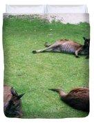 Australian Native Animals Duvet Cover