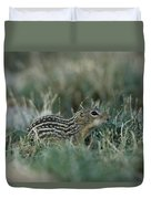 A 13-lined Ground Squirrel At The Henry Duvet Cover