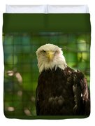 A Bald Eagle At The Lincoln Zoo Duvet Cover