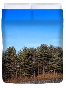 A Barn In The Snow In Maine Duvet Cover