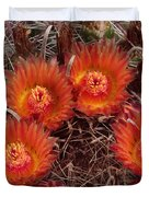 A Barrel Cactus Is Blooming Duvet Cover