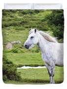 A Beautiful White Dartmoor Pony, Devon, England Duvet Cover