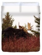 A Big Fierce-eyed Bull Moose Duvet Cover