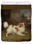A Blenheim Spaniel Duvet Cover by William Webb