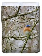 A Bluebird  Duvet Cover