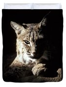 A Bobcat Sitting In A Ray Of Sun Duvet Cover