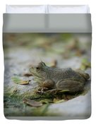 A Bullfrog At The Sunset Zoo Duvet Cover