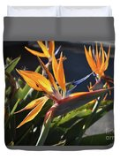A Bunch Of Bird Of Paradise Flowers Bloomed  Duvet Cover