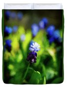 A Bunch Of Flowering Two-tone Grape Hyacinths, No.2. Duvet Cover