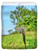 A Butterfly On A Luminous Shining Meadow Duvet Cover