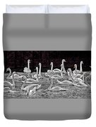 A Cacophony Of Swans Duvet Cover