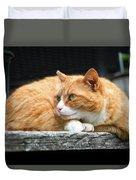 A Cat Named 'kitty' Duvet Cover