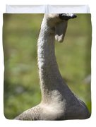 A Chinese Goose Anser Cygnoides At Zoo Duvet Cover