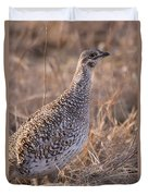 A Close-up Of A Sharptail Grouse Duvet Cover
