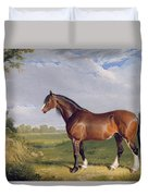 A Clydesdale Stallion Duvet Cover