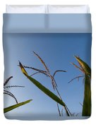A Corn Field At The Historic Waveland Duvet Cover