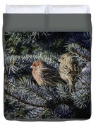 A Couple Of House Finch Duvet Cover by LeeAnn McLaneGoetz McLaneGoetzStudioLLCcom