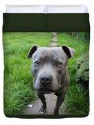 A Cute Dog Outdoors Duvet Cover