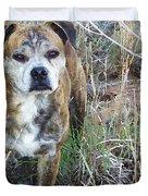 A Dog Named Hoss Duvet Cover by Shelli Fitzpatrick