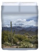A Dusting Of Snow In The Sonoran Desert  Duvet Cover