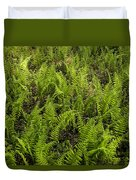 A Field Of Ferns Duvet Cover