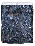 A Fire Scarred Tree Trunk Whose Thick Duvet Cover