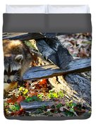 A Foraging Raccoon Duvet Cover