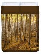 A Forest Of Aspens Duvet Cover