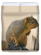 A Fox Squirrel Sciurus Niger Sits Duvet Cover