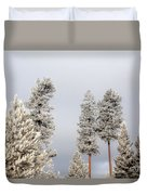A Frosty Morning 2 Duvet Cover