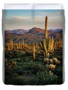 A Golden Sonoran Evening  Duvet Cover