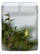 A Goldfinch In A Pear Tree Duvet Cover