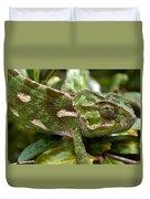 A Green Chamaeleonidae Duvet Cover