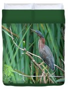 A Green Heron By The Canal Duvet Cover