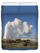 A Group Of American Bison Rest Duvet Cover