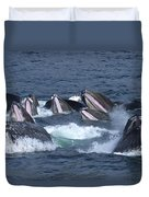 A Group Of Humpback Whales Bubble Net Duvet Cover