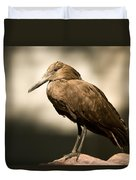 A Hammerkop At The Lincoln Childrens Duvet Cover