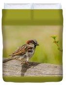 A House Sparrow Duvet Cover