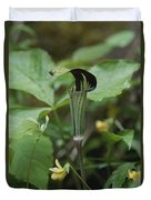 A Jack In The Pulpit  Grows In The Mist Duvet Cover