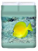 A Juvenile Blue Tang Searching Duvet Cover