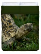 A Leopard Tortoise At The Lincoln Duvet Cover