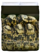 A Leopard Tortoise On The Move Duvet Cover