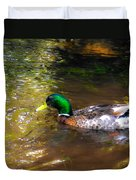 A Male Mallard Duck 3 Duvet Cover