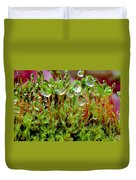A Microcosm Of The Forest Of Moss In Rain Droplets Duvet Cover