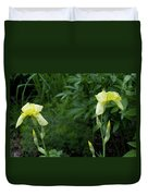 A Pair Of Yellow Bearded Iris 2 Duvet Cover