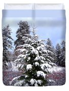 A Peaceful Winter Day Duvet Cover